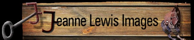 cropped-jeanne_lewis_images_logo.jpg